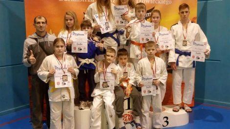 Tarptautiniame vaikų, jaunučių ir jaunių dziudo turnyre alytiškiai iškovojo 8 aukso medalius