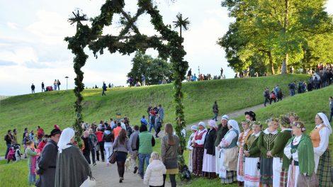 Ką rinksis Lietuva? Senąją Kernavę ar dirbtinius Naisių piliakalnius?