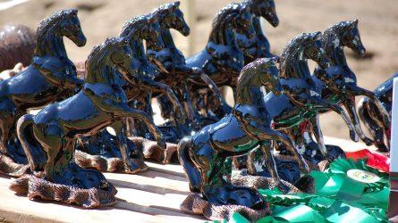 """""""Bėk bėk, žirgeli!"""" Anykščiuose – žirgo ir žmogaus bendrystės šventė"""