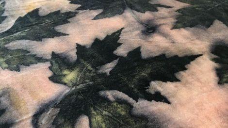 Kviečia pasinerti į kontaktinio augalinio dažymo stebuklą