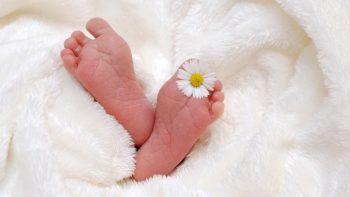 Dėl pagalbos per gimdymus namuose – teistumai