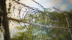 Jaunuoliai kaltinami mirtinai sumušę ir apiplėšę praeivį