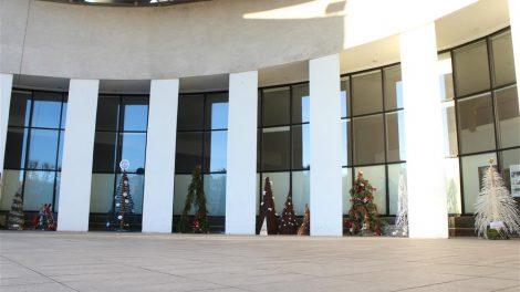 Trečią kartą Alytų puoš Kalėdinių eglučių parkas