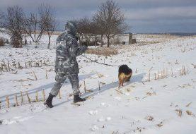 9 kilometrus sekę aptiktais pėdsakais, pareigūnai ir tarnybinis šuo surado senolę apvogusius asmenis (VIDEO)