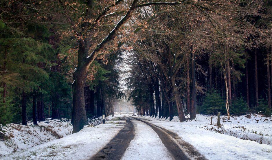 Žiemos grimasos: Rietavo savivaldybės keliukuose tenka laviruoti tarp gyvybės ir mirties