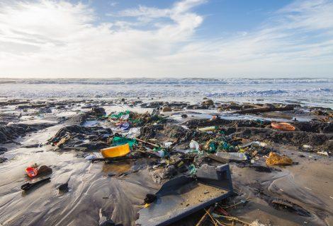 7 būdai, kaip išgelbėti vandenynus