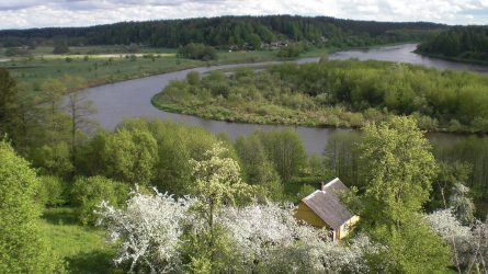 """Festivalis """"Vidur girių""""  Dzūkijoje balandžio 27-29 d."""