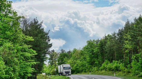 Neblaiviam vilkiko vairuotojui – bauda, konfiskuotas turtas ir atimta teisė vairuoti