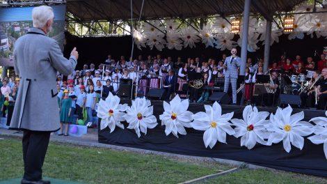 Miesto šventės dalyvių – per tūkstantį iš visos Lietuvos