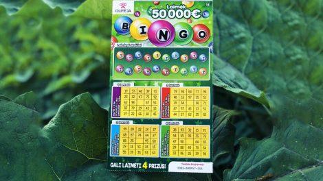 Pusbrolių sėkmė – 50 000 eurų