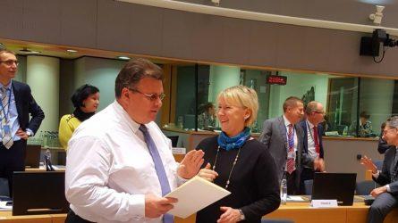 """L. Linkevičius: """"Turime užtikrinti savalaikę ES reakciją į Rusijos provokacijas Ukrainoje"""""""