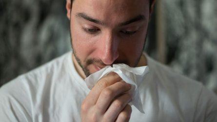 Rudens ligos – lengva sloga ar lėtinis sinusitas?