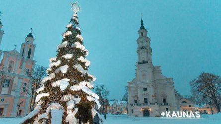 Kaunas atsisveikina su gražiausia Lietuvos eglute: plastikiniai šiaudeliai bus perdirbti