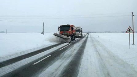 Su sniegu kovojama intensyviai