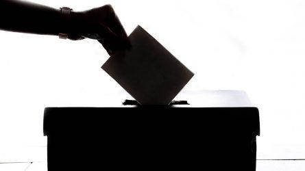 Rinkimai nauji-tradicijos kaip visada