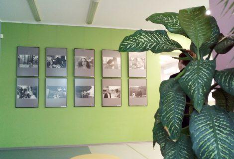 Atidaryta fotomenininko Stasio Povilaičio darbų paroda