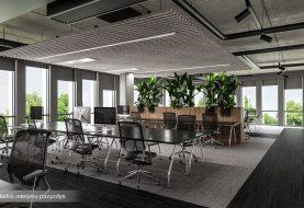 Ankstesnės kartos šito nesupras: darbo patalpose – keturios žaidimų vietos