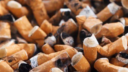 """Rūkorių pamėgtą """"cigarečių medų"""" iškopinėjo policijos pareigūnai"""