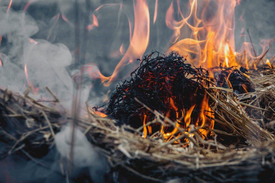 Ruošiamasi šiltuoju sezonu užklumpančioms ekstremaliosioms situacijoms