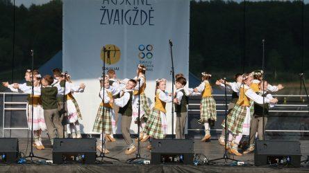 """XIII tarptautinio šokio festivalio-konkurso """"Aušrinė žvaigždė"""" atidaryme – koncertiniai pasirodymai ir vaikų šypsenos"""