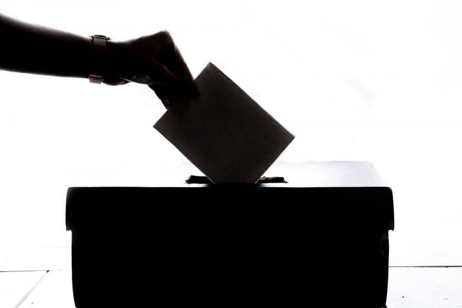 Finišo tiesioji: Kaip nepasiklysti balsavimo džiunglėse?