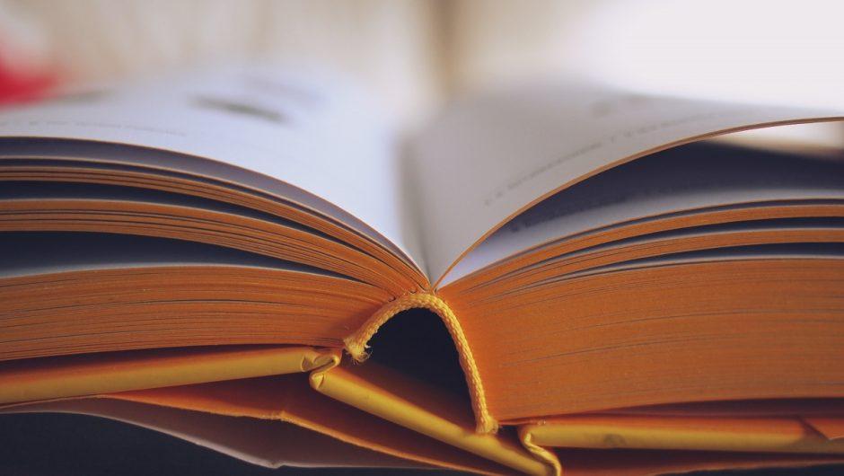 Plungėje siekta skaitovų rekordo: Norėjo kaip geriau gavosi kaip visada