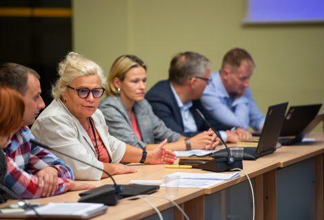 Romainių bendruomenių susitikime su miesto vadovais – diskusijos apie tolesnį mikrorajono augimą