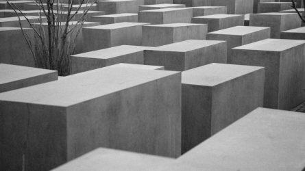 Paskelbtas nuosprendis nužudymo Biržų parke byloje
