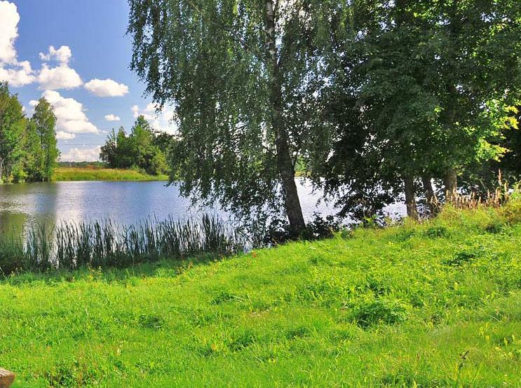Tulnikių tvenkinyje ir Leckavoje prie dainų slėnio maudytis nesaugu