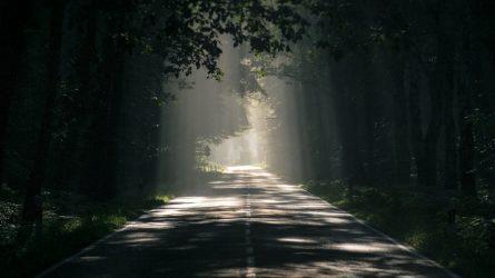 Ką daryti sugedus transporto priemonei kelyje?