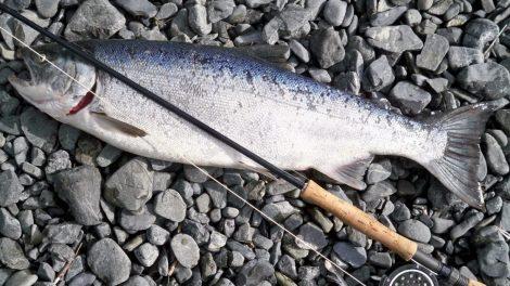 """Per pirmąjį akcijos """"Lašiša 2019"""" mėnesį nustatyta 40 mėgėjų žvejybos taisyklių pažeidimų"""