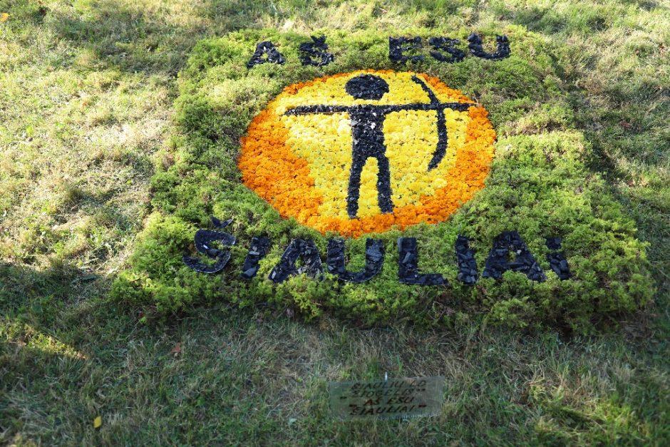 Kūrybinis mozaikų pleneras šį kartą papuošė Beržynėlio parką