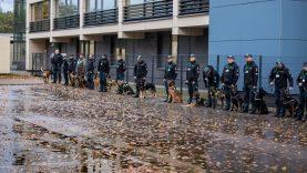 Klaipėdoje vyksta policijos kinologų su tarnybiniais šunimis, ieškančiais narkotinių medžiagų, varžybos