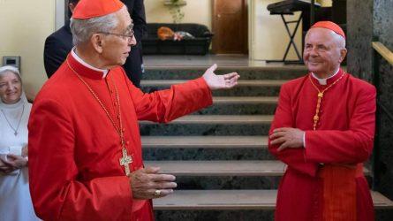 Kardinolas Sigitas Tamkevičius: Tikėjimo esmė yra sekimas Jėzaus pėdomis