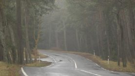 Kelias į Nidą virsta problema