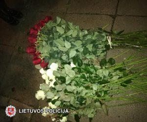 Už areštinės grotų ‒ rožių vagis