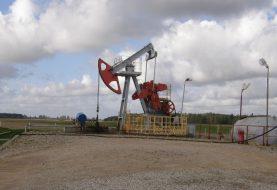 Naftos gavyba šalyje mažėja