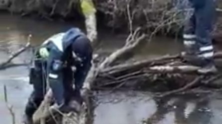 Policija ir bendruomenės sutelktumas išgelbėjo žmogų
