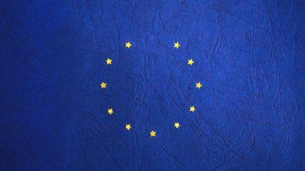 Brexit: vasario 1-ają prasideda pereinamasis laikotarpis