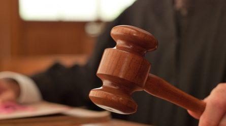 Skolų išieškojimas teismine tvarka: Piktybiniai skolininkai