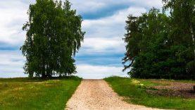 2020–2021 metams nupirkti vietinės reikšmės kelių ir gatvių priežiūros (greideriavimo) darbai