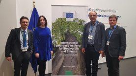 Tarptautinėje konferencijoje – susirūpinimas miškų apsauga ir ateitimi
