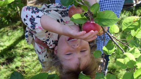 Ikimokyklinukus kviečiame maitinti ekologišku maistu