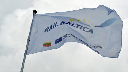 "Lietuva siekia sklandaus ""Rail Baltica"" koordinavimo"