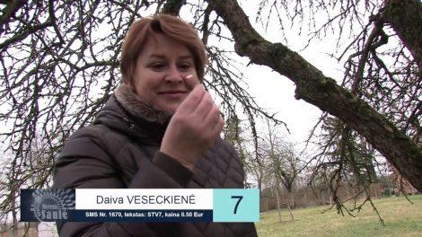 7. Daiva Veseckienė – Moteris Saulė 2019