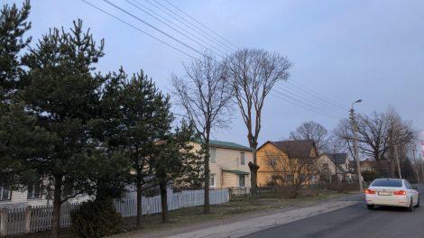 Panevėžys atsinaujina! Savivaldybė vėl perka 3 metų gatvių remonto paslaugas