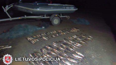 Aplinkosaugininkų automobilyje – žvejybiniai tinklai ir žuvis [video]