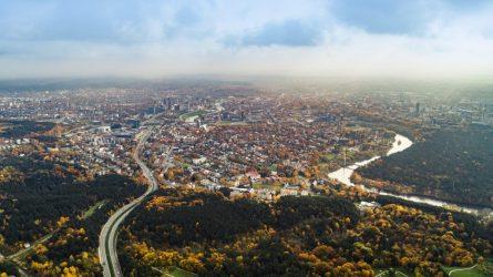 Vilnius ruošiasi perimti miesto miškų valdymą: supaprastins jų administravimą