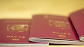 Ministrė R. Tamašunienė: pilietybės atkūrimo klausimai turėtų būti sprendžiami greičiau