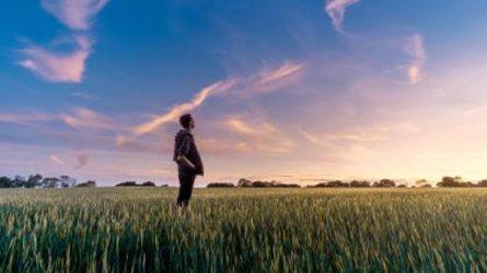 Ekologiškai ūkininkaujantiems papildomai skirta 38 mln. Eur